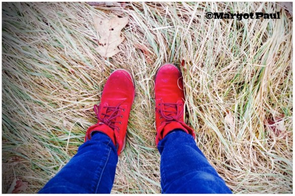 Red Shoe project_04