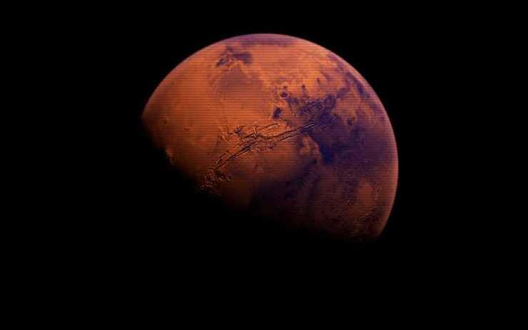 Υπάρχει βλάστηση στον Άρη;