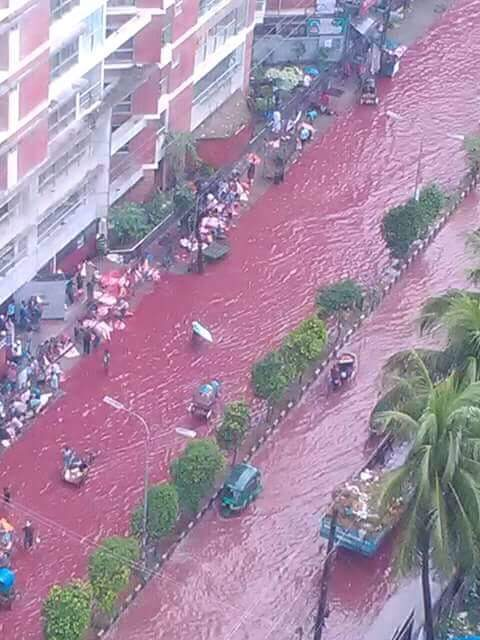 Blood red water in the streets of Dhaka after Eid al-Adha 2016, blood red streets dhaka, dhaka streets blood red, flooded streets dhaka blood red, blood dhaka street, Eid al-Adha 2016, Eid al-Adha 2016 dhaka, dhaka slaughter