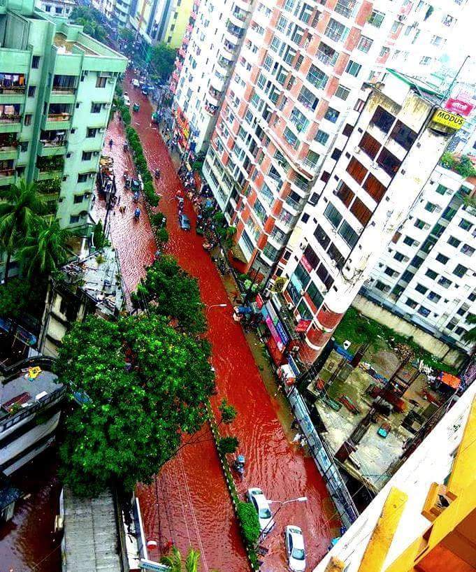 blood red streets dhaka, dhaka streets blood red, flooded streets dhaka blood red, blood dhaka street, Eid al-Adha 2016, Eid al-Adha 2016 dhaka, dhaka slaughter, Blood red water in the streets of Dhaka after Eid al-Adha 2016