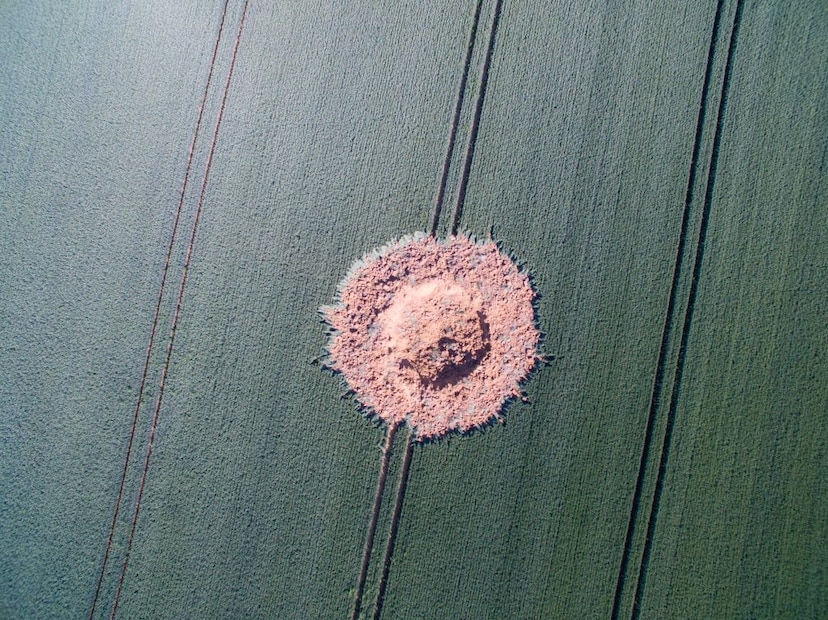 mysterious explosion german cornfield WWII bomb, mysterious explosion german cornfield WWII bomb picture, mysterious explosion german cornfield WWII bomb video, mysterious explosion german cornfield WWII bomb june 24 2019