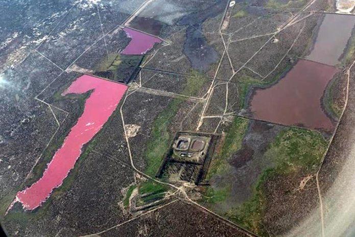 https://i0.wp.com/strangesounds.org/wp-content/uploads/2021/07/lagoon-turns-pink-in-Argentina-laguna-corfo-1.jpg?w=696&ssl=1