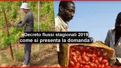 Photo of flussi stagionali 2019 : come si presenta la domanda?