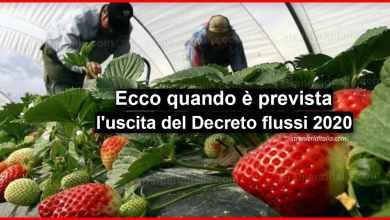 Photo of Decreto flussi 2020: Ecco quando è prevista l'uscita! | Stranieri d'Italia