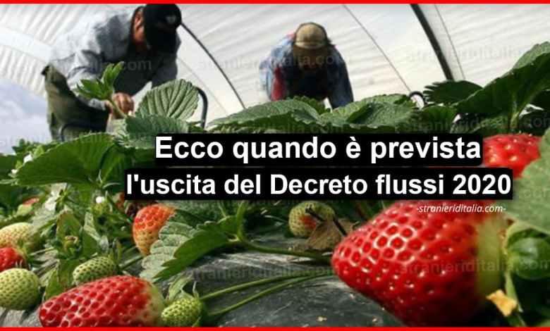Photo of Decreto flussi 2020: Ecco quando è prevista l'uscita!   Stranieri d'Italia