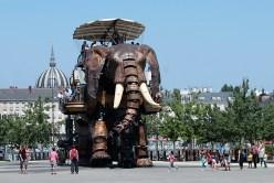Elefant Nantes