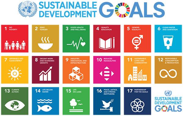 Sustainable_Development_Goals_Figure