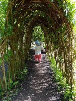 A willow tunnel ©Stratfordblog.com