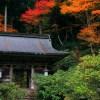 京都の紅葉で北部のハイキング穴場を厳選!常照皇寺・志明院・峰定寺!