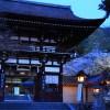 京都の桜 おすすめの穴場撮影スポット|西京区編|法輪寺・松尾大社・西山別院