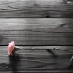 母の日に贈る花束でカーネーション以外のおすすめは?鉢植えとどっちがいいの?