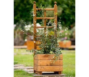 Tom Chambers Small-Skye-Trellis-planter-available from strawberry garden centre uttoxeter