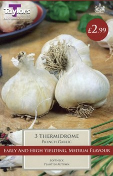 Taylors Bulbs AVEG9 French Garlic Thermidrome available from Strawberry Garden Centre, Uttoxeter