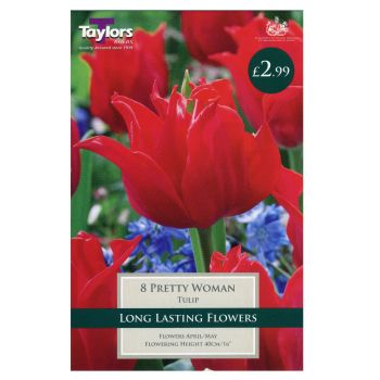 Taylors Bulbs TP475 Tulip Pretty Woman available from Strawberry Garden Centre, Uttoxeter