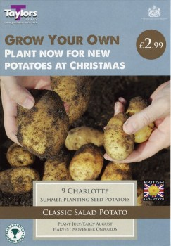 Taylors Bulbs VP601 Autumn Planting Seed Potatoes Charlotte available from Strawberry Garden Centre, Uttoxeter