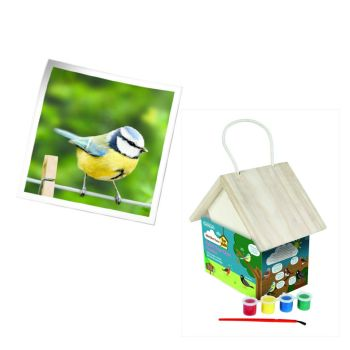 Gardman A01909 Paint your own bird feeder available from Strawberry Garden Centre, Uttoxeter