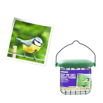 Gardman A04246 Flip top suet feast feeder available from Strawberry Garden Centre, Uttoxeter