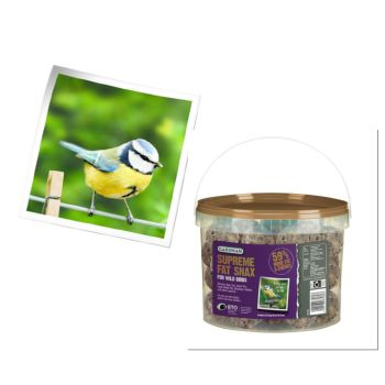 Gardman A04294 no net premium fat snax 50 tub available from Strawberry Garden Centre, Uttoxeter