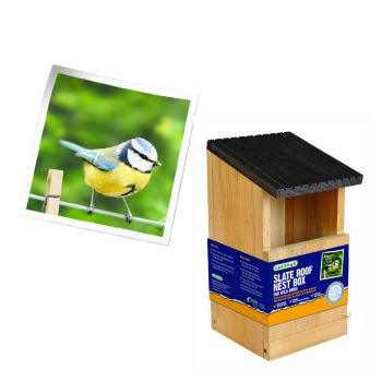 Gardman A04380 Robin Nest Box available from Strawberry Garden Centre, Uttoxeter