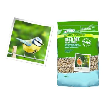 Gardman A06570 No Grow Seed Mix 4kg available from Strawberry Garden Cerntre, Uttoxeter