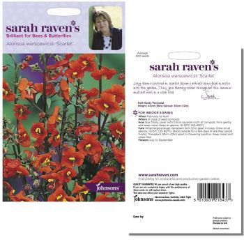 sarah-raven-alonsoa-warscewiczii-scarlet-seeds-available-from-strawberry-garden-centre-uttoxeter