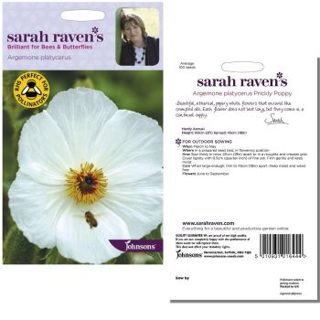 sarah-raven-argemone-platycerus-seeds-available-from-strawberry-garden-centre-uttoxeter