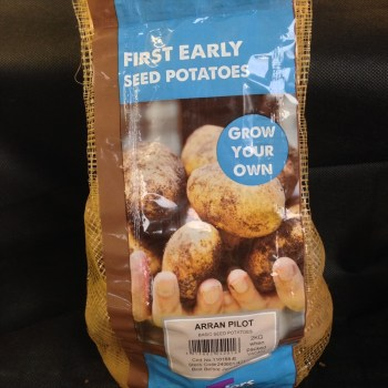 taylors-arran-pilot-first-early-seed-potatoes-available-from-strawberry-garden-centre-uttoxeter