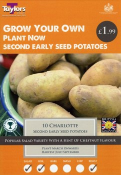 taylors-charlotte-seed-potatoes-available-from-strawberry-garden-centre-uttoxeter