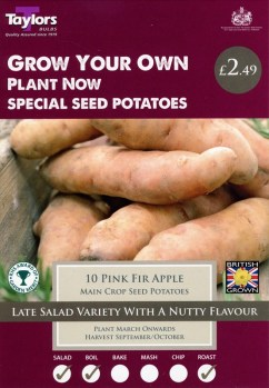 taylors-pink-fir-apple-seed-potatoes-available-from-strawberry-garden-centre-uttoxeter