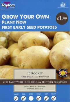 taylors-rocket-seed-potatoes-available-from-strawberry-garden-centre-uttoxeter