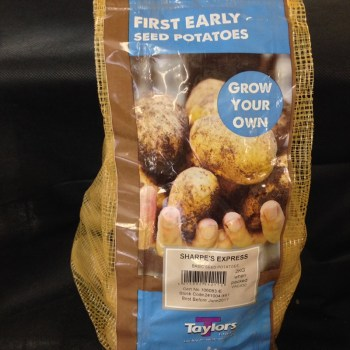 taylors-sharpes-express-first-early-seed-potatoes-available-from-strawberry-garden-centre-uttoxeter