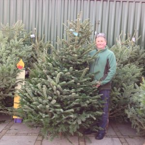 christmas-trees-now-available-from-strawberry-garden-centre-uttoxeter