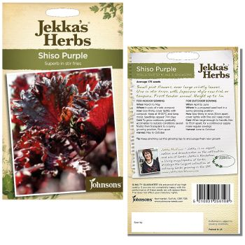 jekkas-herbs-shiso-purple-seeds-available-from-strawberry-garden-centre-uttoxeter