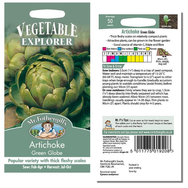 Mr. Fothergill Artichoke Green Globe Seeds available from Strawberry Garden Centre, Uttoxeter