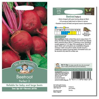 Mr. Fothergill Beetroot Perfect 3 Seeds available from Strawberry Garden Centre, Uttoxeter