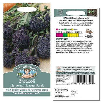 Mr. Fothergill Broccoli (Sprouting) Summer Purple Seeds available from Strawberry Garden Centre, Uttoxeter
