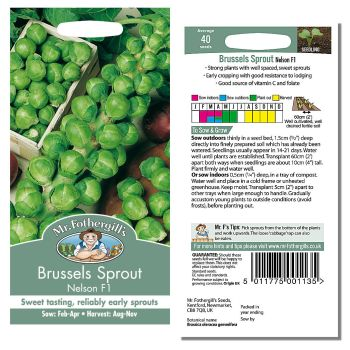 Mr. Fothergill Brussels Sprout Nelson F1 Seeds available from Strawberry Garden Centre, Uttoxeter