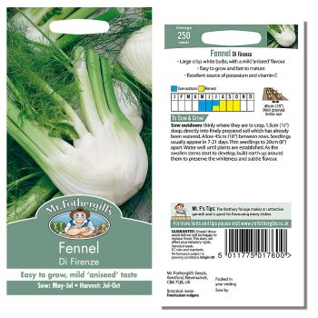 Mr. Fothergill Fennel Di Firenze Seeds available from Strawberry Garden Centre, Uttoxeter