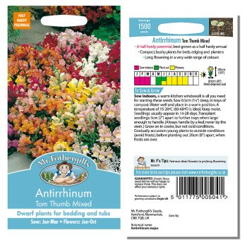 Mr. Fothergill Antirrhinum Tom Thumb Mixed Seeds available from Strawberry Garden Centre, Uttoxeter