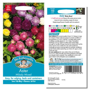 Mr. Fothergill Aster Milady Mixed Seeds available from Strawberry Garden Centre, Uttoxeter