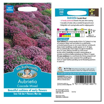 Mr. Fothergill Aubrietia Cascade Mixed Seeds available from Strawberry Garden Centre, Uttoxeter
