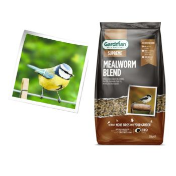 Gardman A09002 mealworm feast 1.8kg available from Strawberry Garden Centre, Uttoxeter