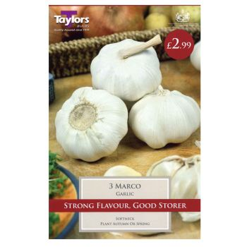 Taylors Bulbs SVEG6b Garlic Marco available from Strawberry Garden Centre, Uttoxeter