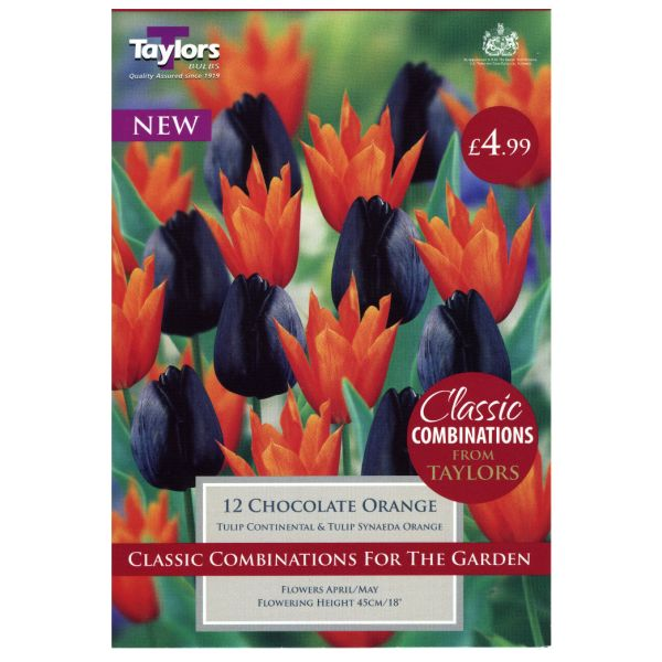 Taylors Bulbs CC112 Classic Tulip Combinations in Chocolate Orange available from Strawberry Garden Centre, Uttoxeter