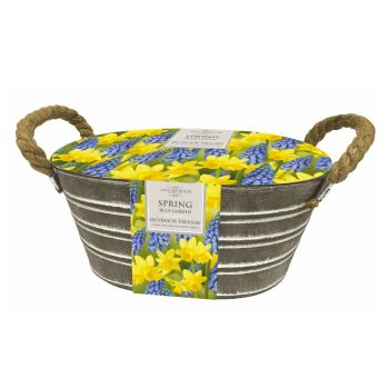 Taylors Bulbs EB161 Outdoor Narcissi & Muscari Metal Trough Gift Set available from Strawberry Garden Centre, Uttoxeter