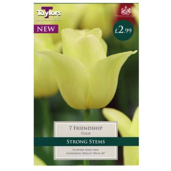 Taylors Bulbs TP2163 Tulip Friendship available from Strawberry Garden Centre, Uttoxeter