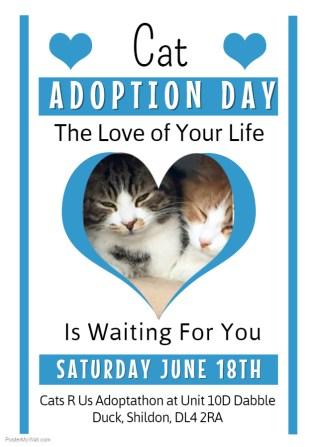 Copy of Kitten Adoption