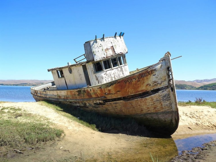 The Point Reyes shipwreck is an abandoned boat in the town of Inverness just outside of Point Reyes Station.