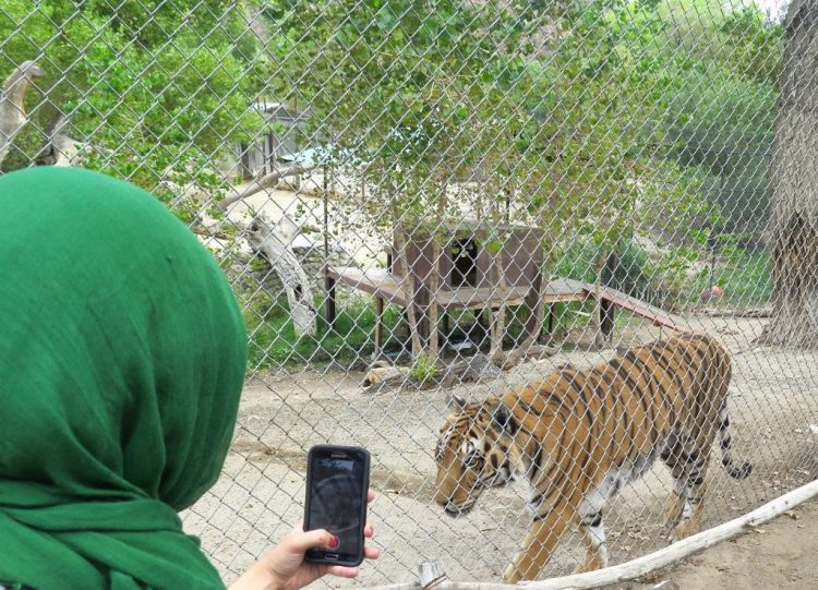 Siberian Selfie