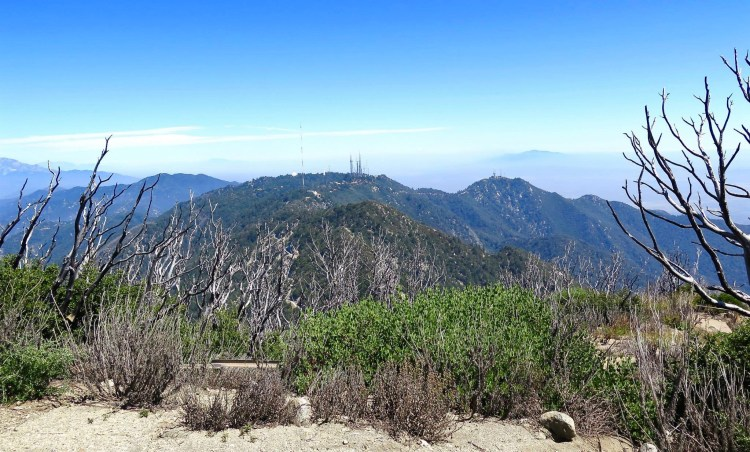 Mt. Wilson is the next peak over.